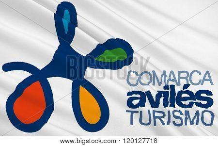 Flag Of Aviles Administrative Divisions Of Asturias, Spain