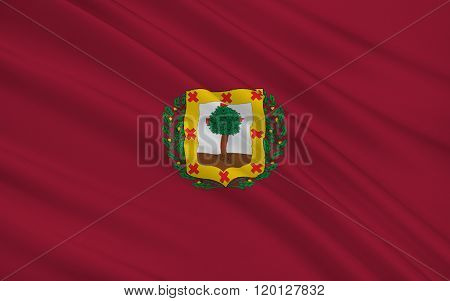 Flag Of Biscay Is A Province Of Spain