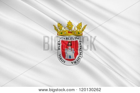 Flag Of Soria Is A City In North-central Spain