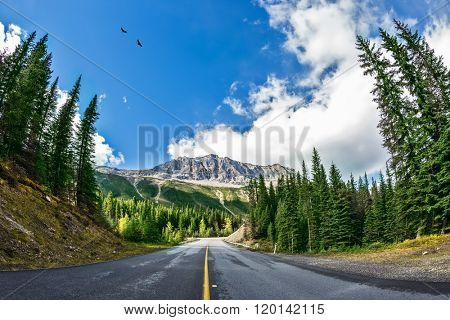 Rocky Mountains of Canada. The picturesque road in Yoho National Park