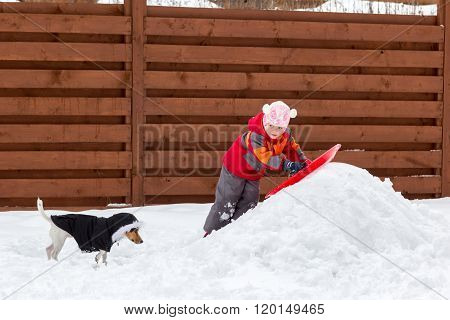 Little Girl And Dog Sledding In Snow