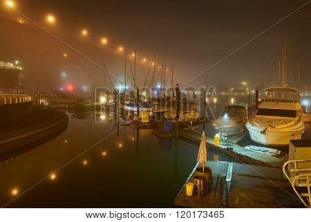 False Creek Night Fog, Vancouver