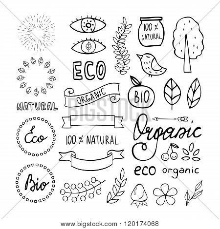 Modern Hand Drawn Elements Design Organic