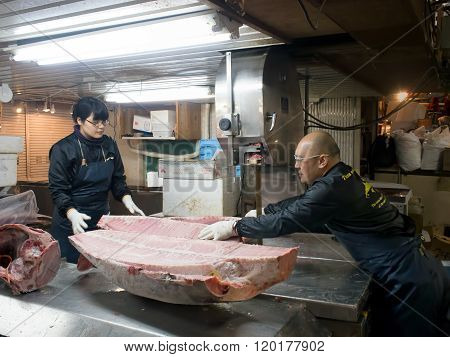 Workers Cutting Up A Giant Tuna With Electric Saw At Tsukiji Fish Market