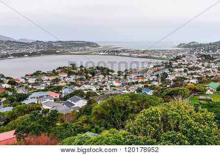 View Of The Bay, Wellington, New Zealand