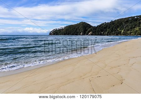Bark Bay In Abel Tasman National Park, New Zealand