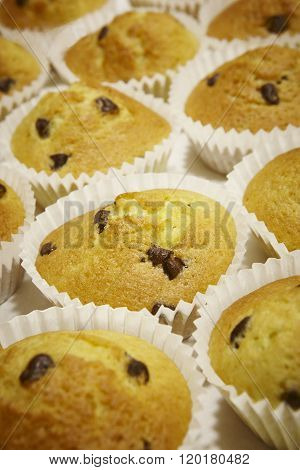 Cupcakes With Chocolate In Vertical Format