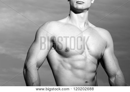 Bare Torso Of Man
