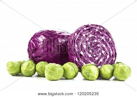 Red Cabbage And Brussel Sprouts On White