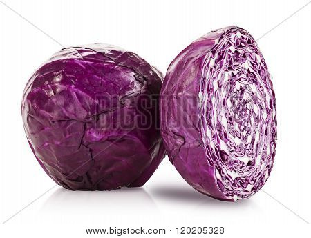 Studio Isolated Red Cabbage