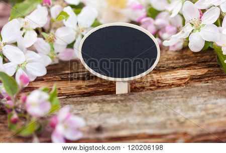 Chalkboard With Apple Blossoms