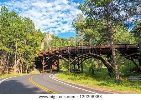 Bridge In Custer State Park