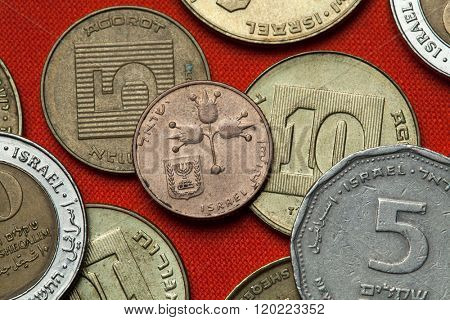 Coins of Israel. Three pomegranates depicted in the Israeli 10 new agorot coin.