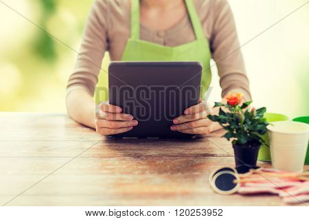 people, gardening, flowers and profession concept - close up of woman or gardener holding tablet pc computer and sitting at wooden table over green natural background