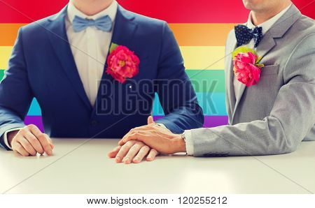 people, homosexuality, same-sex marriage and love concept - close up of happy married male gay couple in suits with buttonholes and bow-ties holding hands on wedding over rainbow flag background