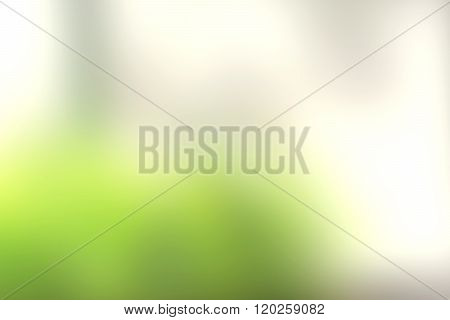 Blurry Green Background In The Spring