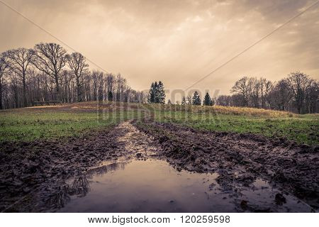 Puddle At A Muddy Road
