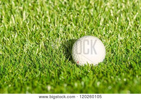 Golf Ball On Astro Turf