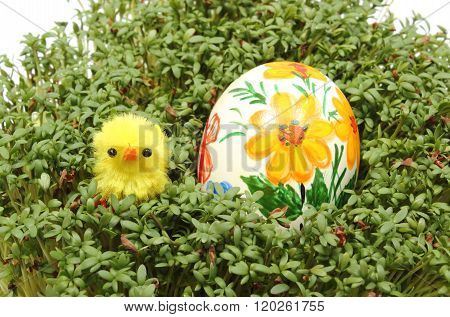 Easter Chicken And Painted Egg On Fresh Green Watercress