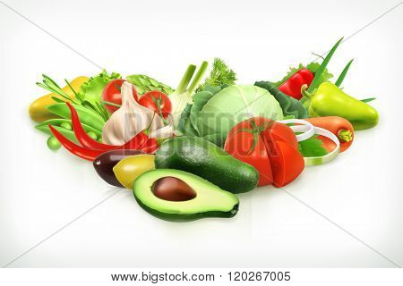 Avocado, harvest juicy and ripe vegetables vector illustration