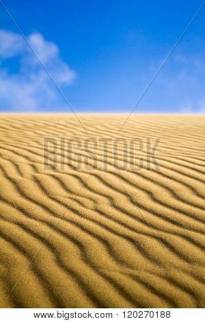 Natural Untouched Golden Sand Dune Ripples