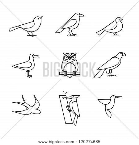 Birds icons thin line art set