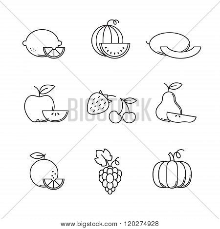 Fruit icons thin line art set