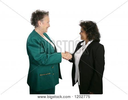 Female Business Team Shake Hands
