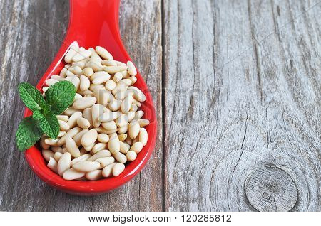 Pine nut close-up shot on the wood backgraund.