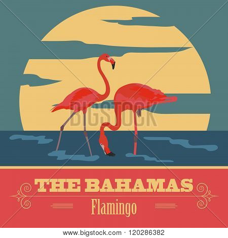 The Bahamas infographics. The Bahamas.  Flamingo as a national symbol of the Bahamas. Vector illustration.