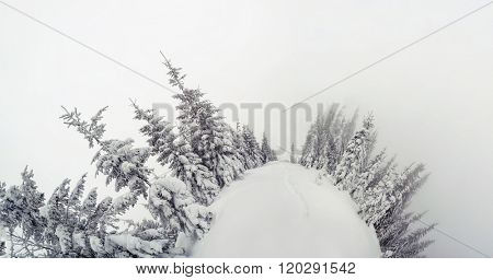 Majestic winter landscape. Dramatic wintry scene. Location Carpathian national park, Ukraine, Europe. Ski resort. Beauty world. Instagram toning effect. Happy New Year!