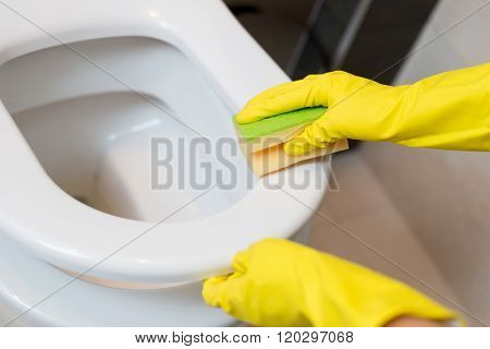 Cleaning Toilet Seat In Wc With Yellow Sponge