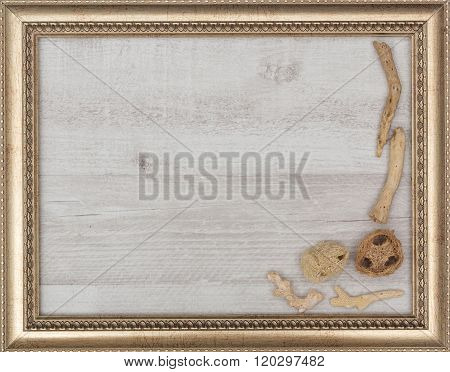 gilded picture frame with shells inside