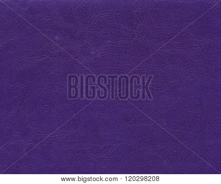 Violet Leather Texture.