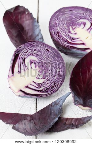 Purple Cabbage Cross Section