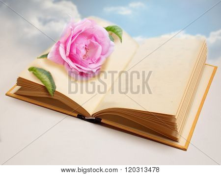 Dream Romantic Book