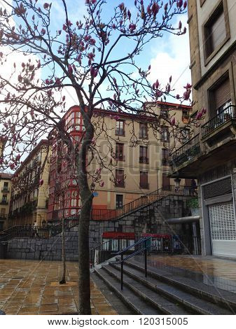 Urban landscape in the city of Bilbao, Bizkaia, Basque Country, Spain