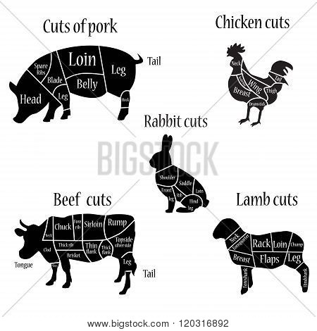 Butcher Chart Diagrams