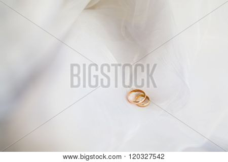 Wedding Rings On White