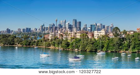 Looking across Cremorne to Sydney central Business District panorama