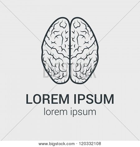 Line vector brain icon on gray background. Single logo with graphic illustration of human brain.