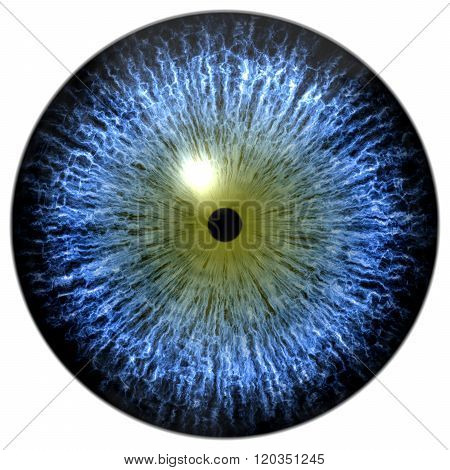 Blue Alien, Bird, Cat Or Reptile Eye With Olive Green Circle Around The Narrow Pupil
