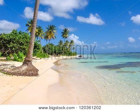 Sainte-Anne Guadeloupe