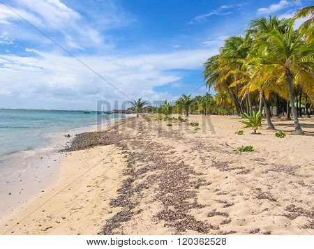 La Caravelle beach Guadeloupe