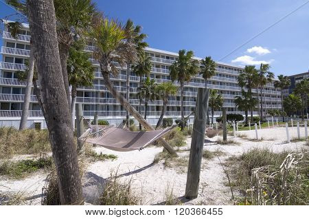 Florida Beach Resort And Palm Trees