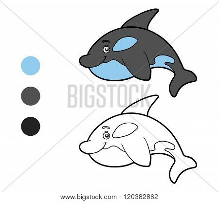 Coloring Book, Coloring Page (killer Whale)