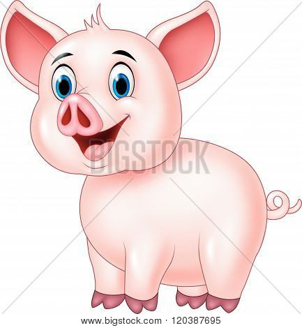 Cute pig posing isolated on white background