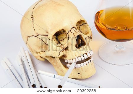 Skull Head With Cigarettes And Alcohol