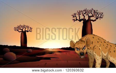 Hyena in the field illustration