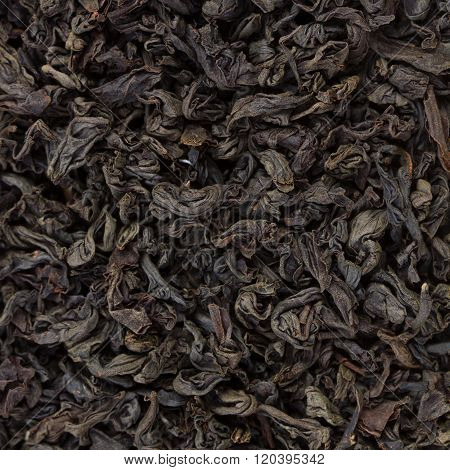 Black Tea Leaves Background. Texture of fragrant tea.